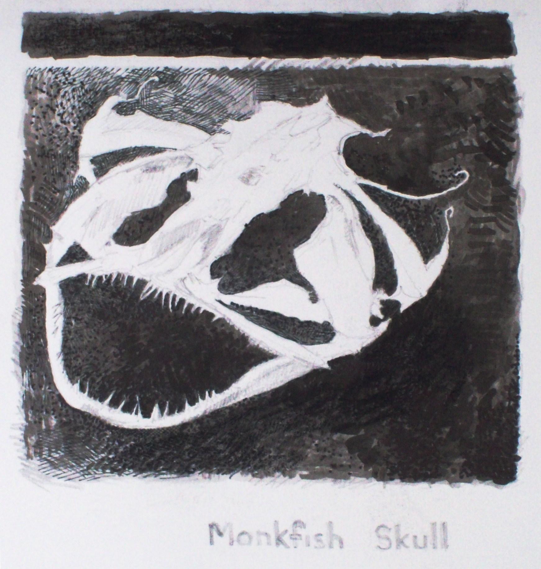 monkfish skull